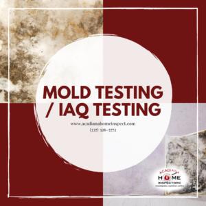 Acadiana Home Inspectors Mold Testing_ IAQ Testing